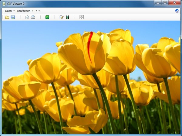 GIF Viewer 2.1